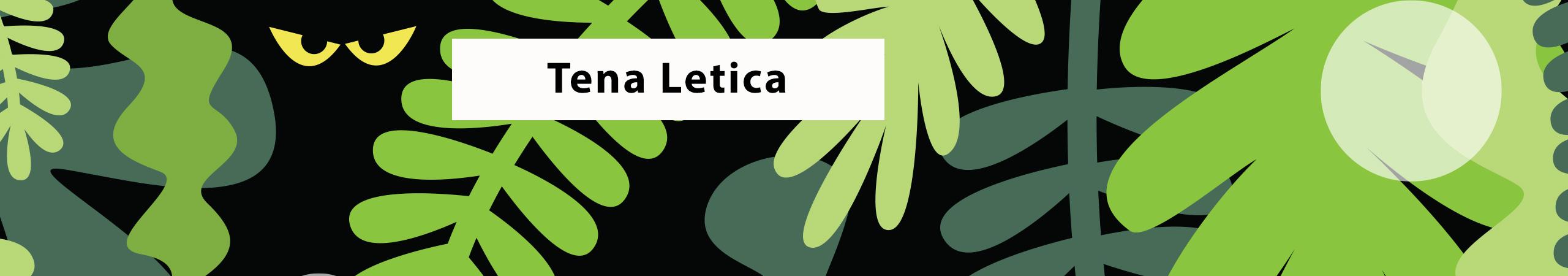 Tena Letica