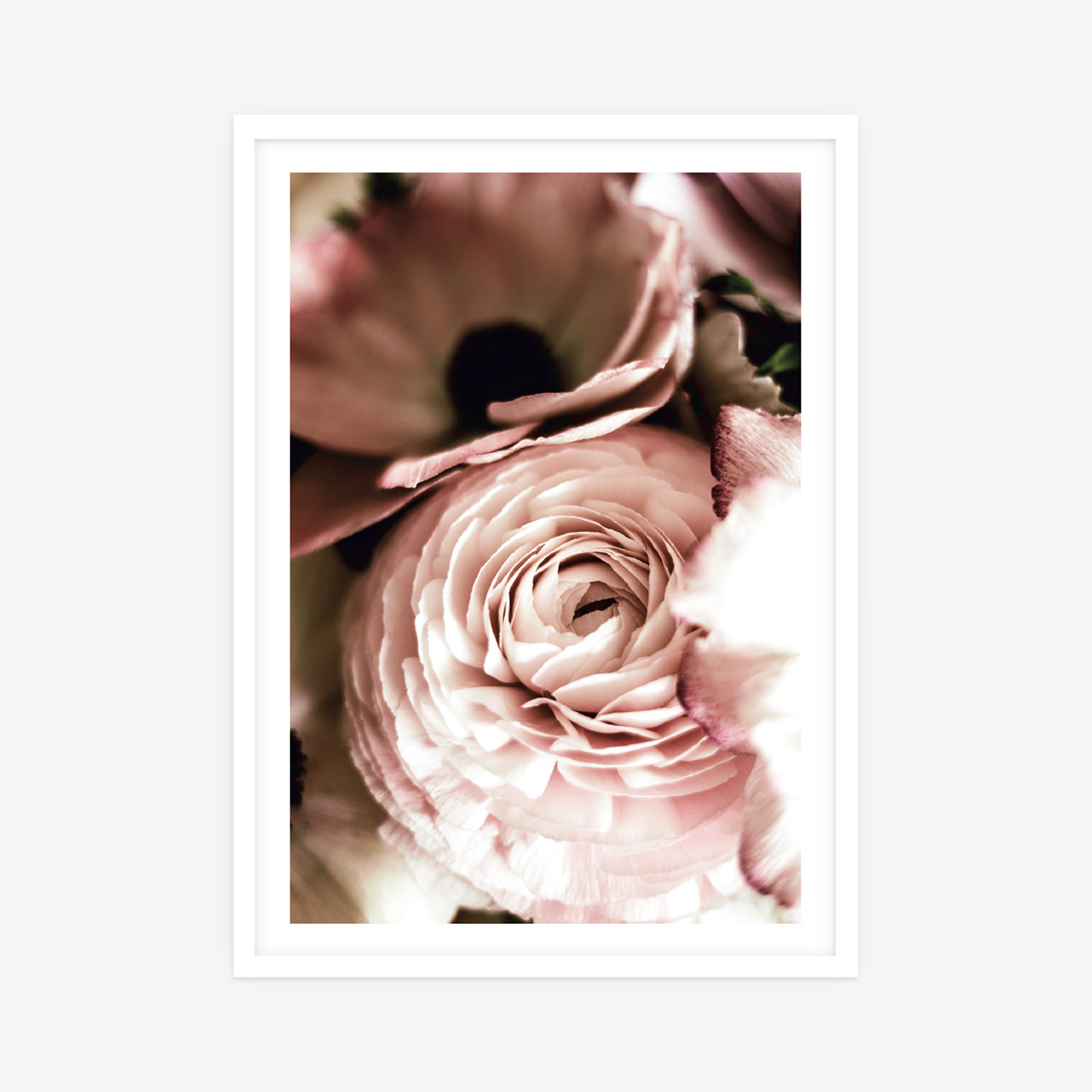 More Less Flowers • Nine